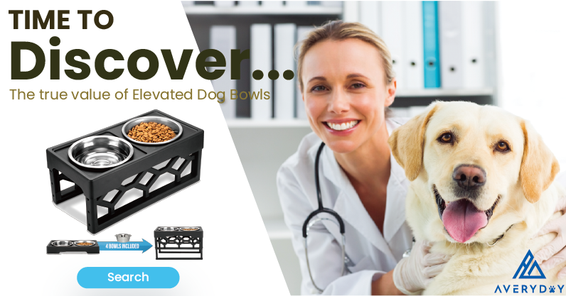 dog bowls, dog bowl, elevated dog bowls, raised dog bowls, dog food bowl, dog bowls elevated, dog feeder, slow feed dog bowl, dog water bowl, dog bows, dog bowl stand, dog dish, elevated dog bowls for large dogs, dog food bowls, raised dog bowls for large