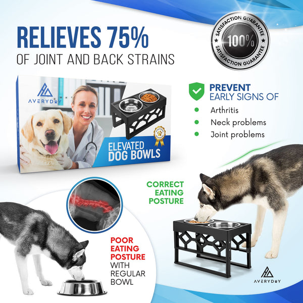 AveryDay™ Elevated Dog Bowls- 4 Adjustable Height & 2-4 Stainless Steel Bowls