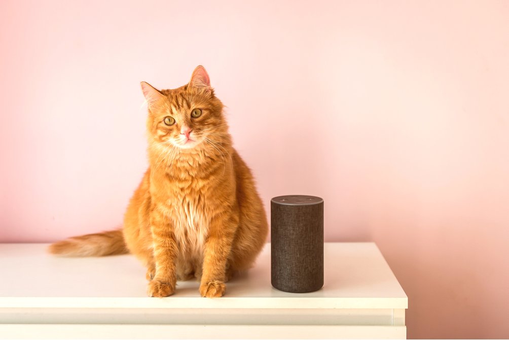 An Uber Pet, Safe in Your Smart Home