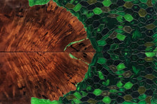 Load image into Gallery viewer, Redwood Burl & Aluminum Honeycomb Custom Knife Scales #21141