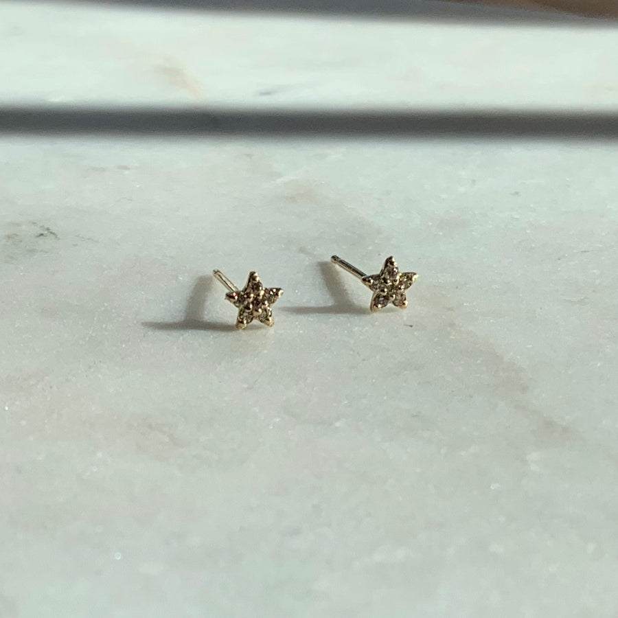 The First Star of the Night Diamond Earrings