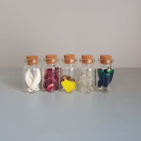 gemmas-curiosity-shop - Viral bottle set - Gemma's Curiosity Shop - Viral bottles