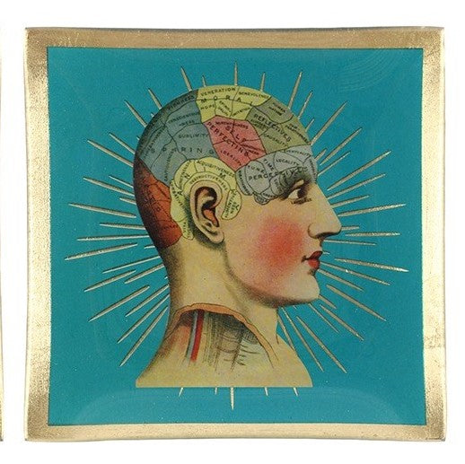 Phrenology Tray