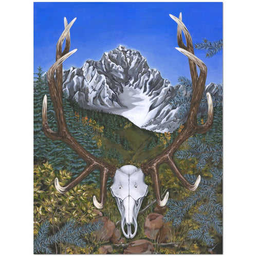 Elk in the Rockies Giclée Canvas Print