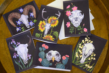 Greeting Card 6-Pack