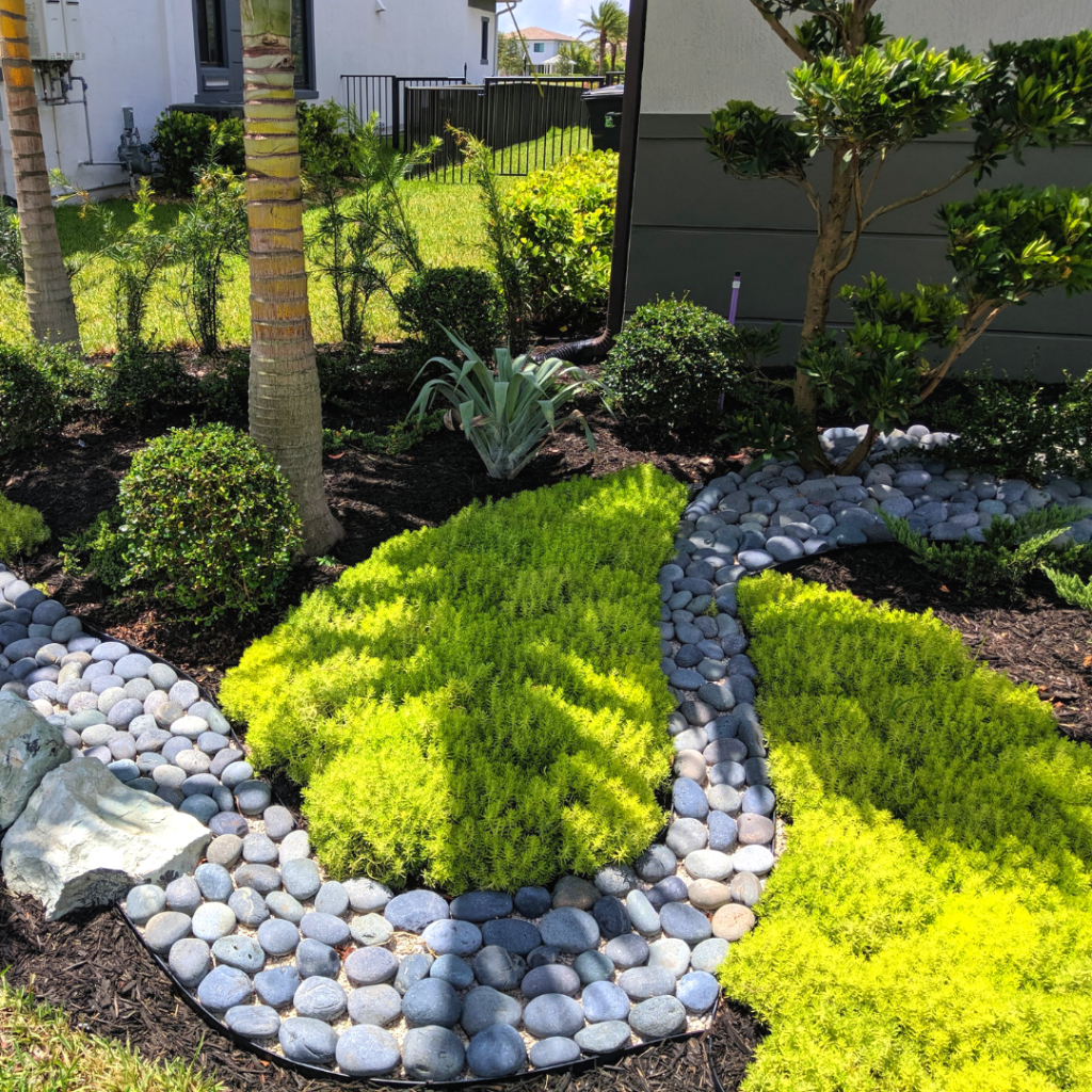 Stunning New Front Yard Landscaping In Parkland Fl Cascata