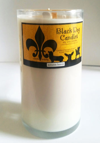 22 oz Tall Glass Soy Wax Candle
