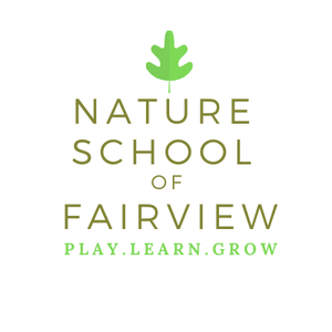 Nature School of Fairview