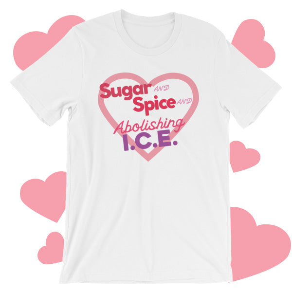 Sugar and Spice and Abolishing ICE T-Shirt