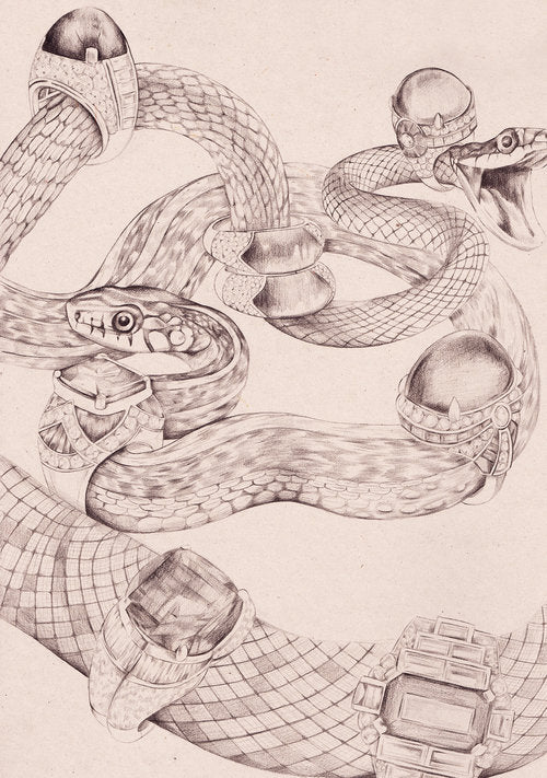 Bvlgari Jewellery sparklers rings serpents snakes illustration by Melbourne based illustrator Kelly Thompson