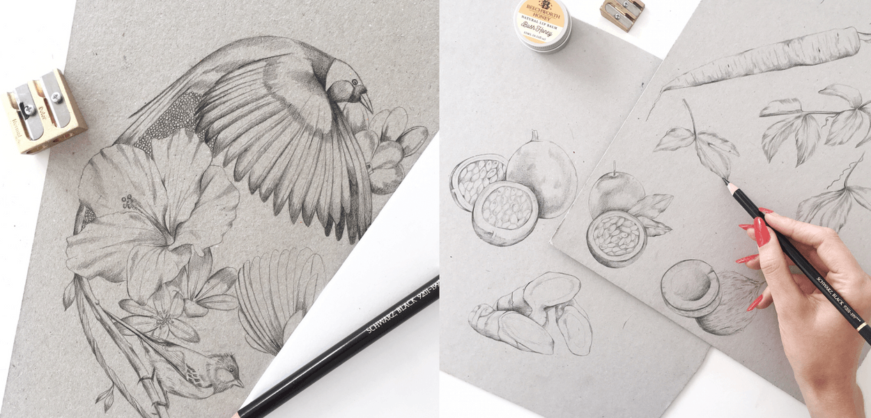 Pencil illustrations by Melbourne illustrator Kelly Thompson
