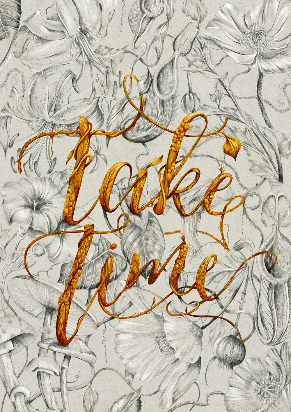Pencil and Photoshop botanical illustration typography by Melbourne based illustrator Kelly Thompson