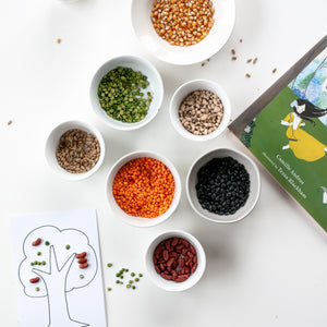 Beyond the Book: Seed Mosaics