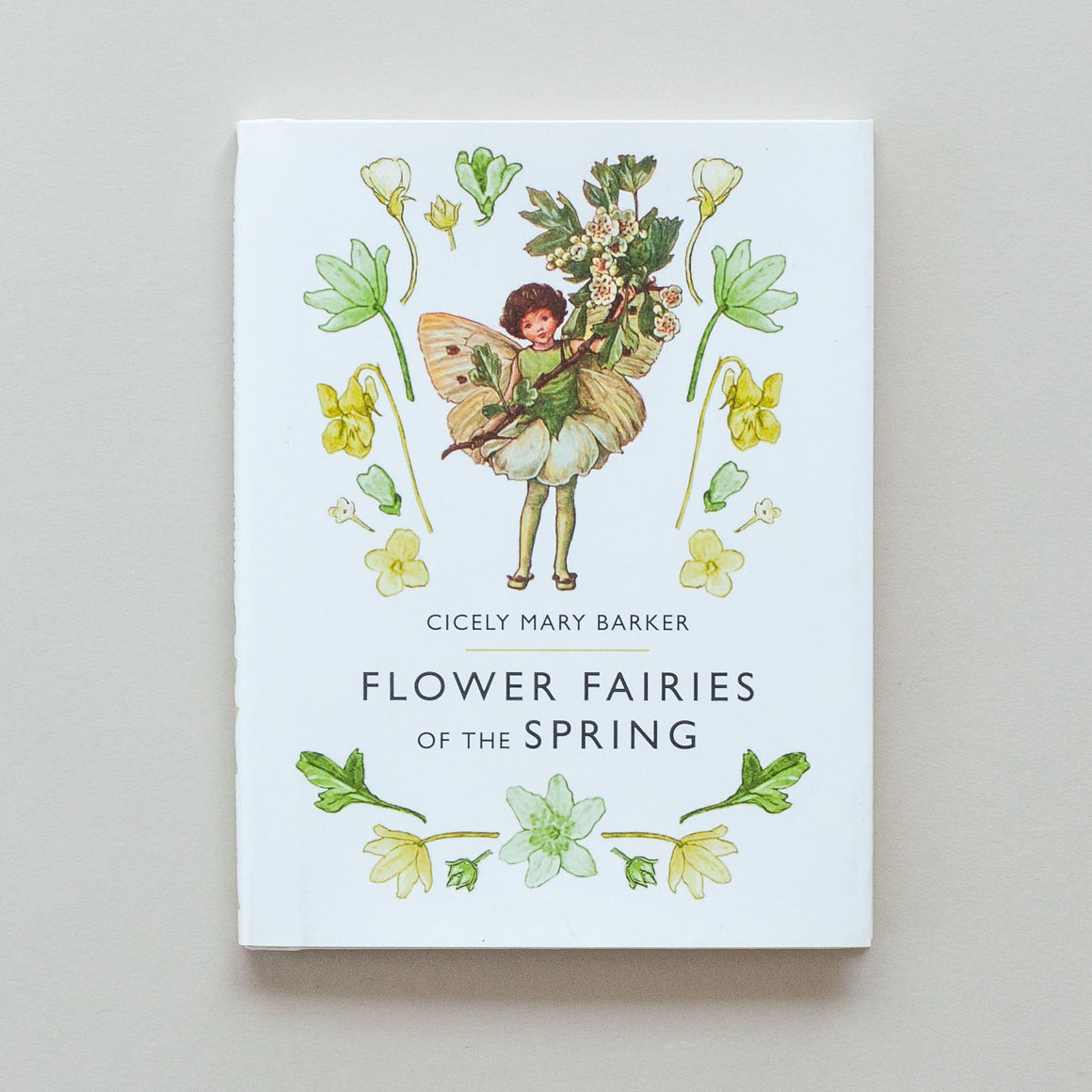 Flower Fairies Book Series