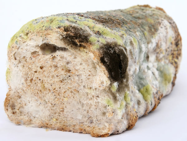 "So long ""Artificial Preservatives""!!! Natural Mold Protection for Baked Goods"