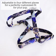 """Galaxy"" Harness"