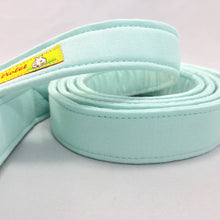 """Mint"" Leash"