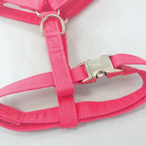 """Watermelon"" Harness"