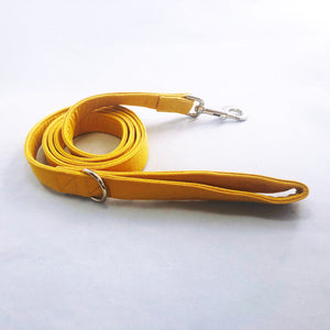 """Goldilocks"" Leash"