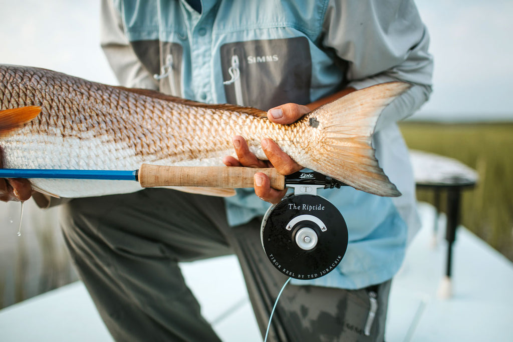 Redfish on Epic 888 Fiberglass Fly Rod