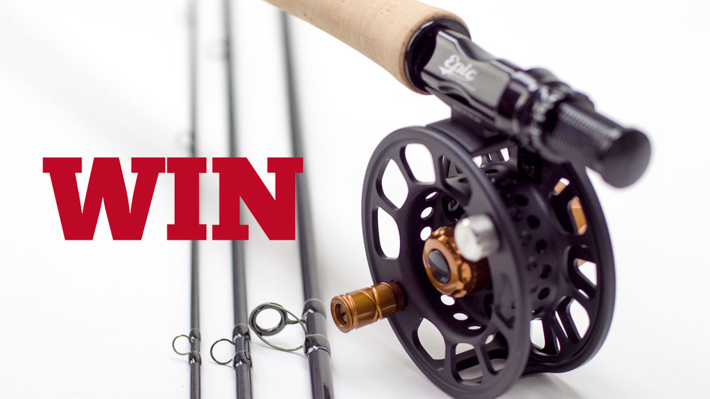 WIN a fly rod
