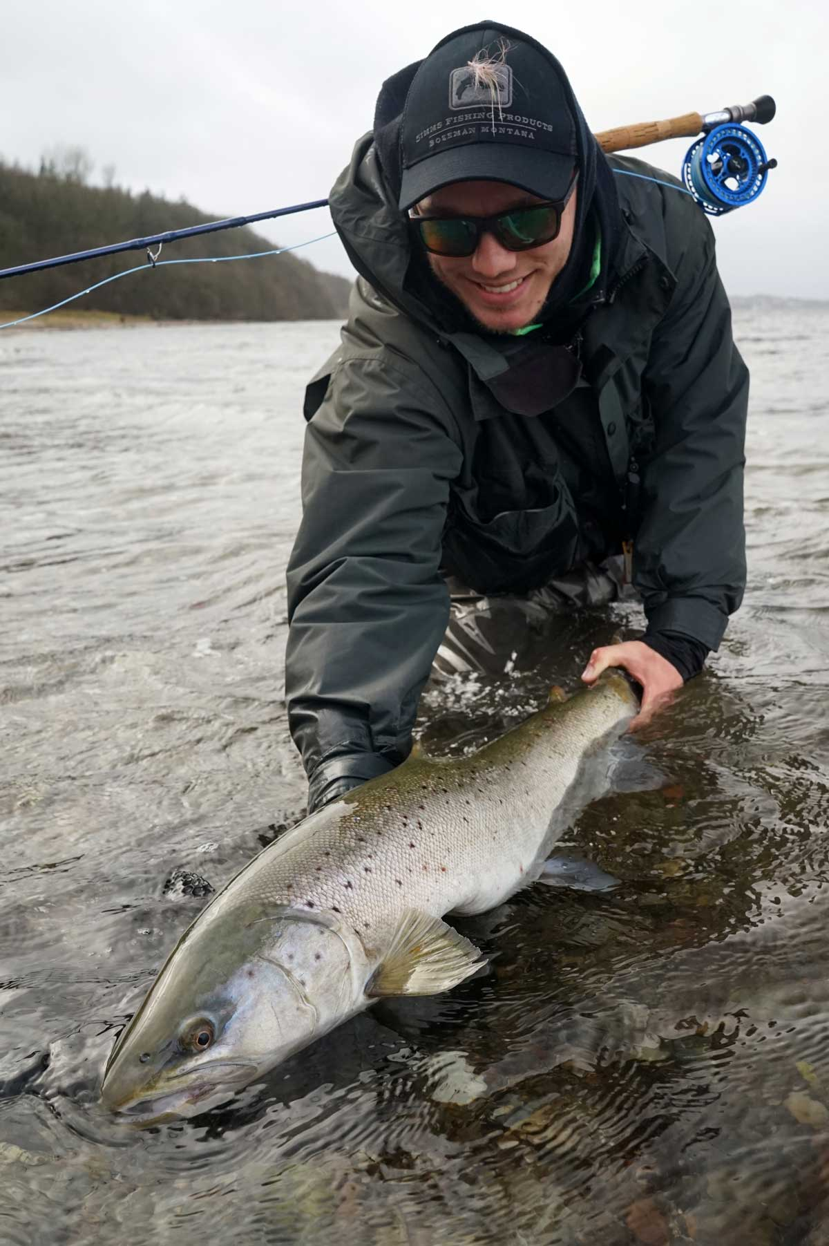 Fly Fishing For Sea Run Brown trout with fly rods