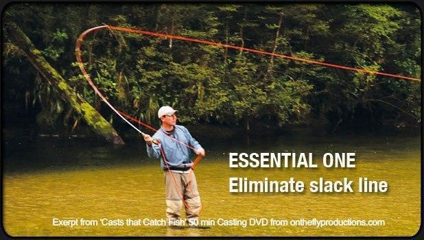 Fly Casting Essential One