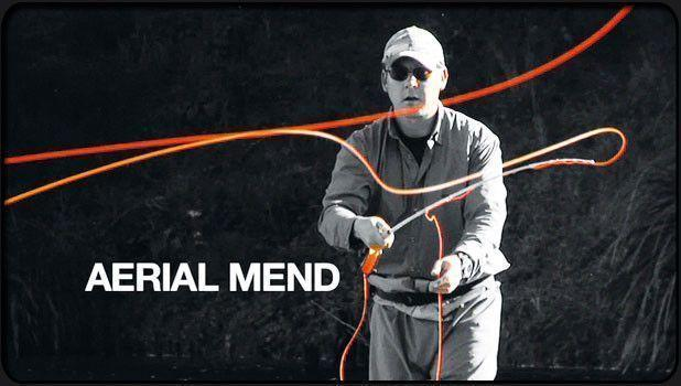 Video Download The Aerial Mend