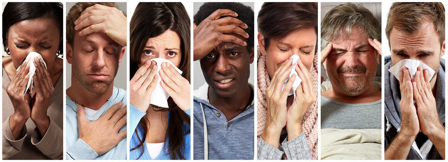 Top 10 Myths About the Flu