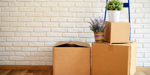 Tabitha Eve Moving House Sustainably Reuse Boxes