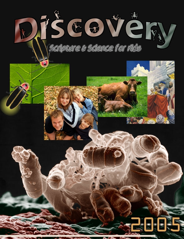 Discovery Bound Volume 2005
