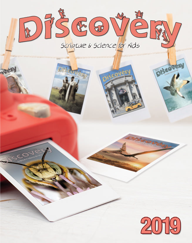 Discovery Bound Volume 2019