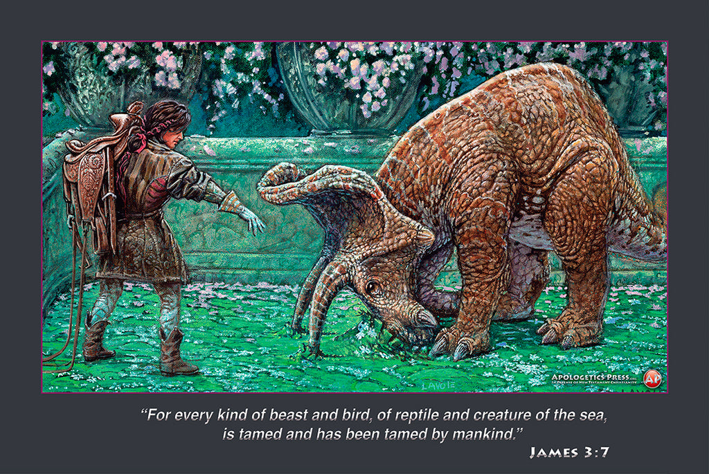 "Dinosaur Poster: ""Down"" (James 3:7)"