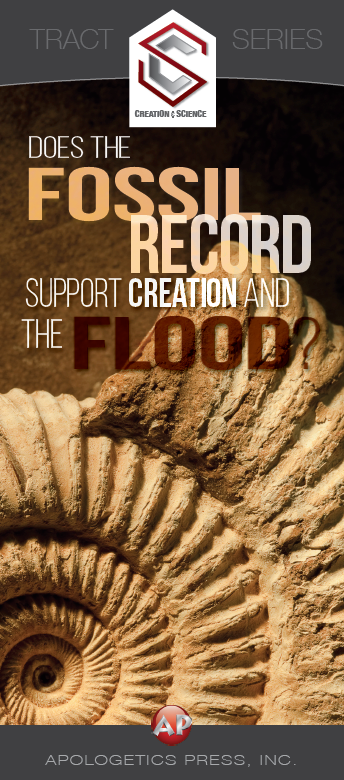 Does the Fossil Record Support Creation and the Flood?