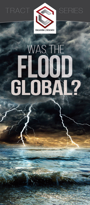 Was the Flood Global?