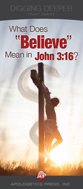 "John 3:16, What Does ""Believe"" Mean in?"