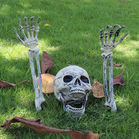 Halloween Skeleton Prop