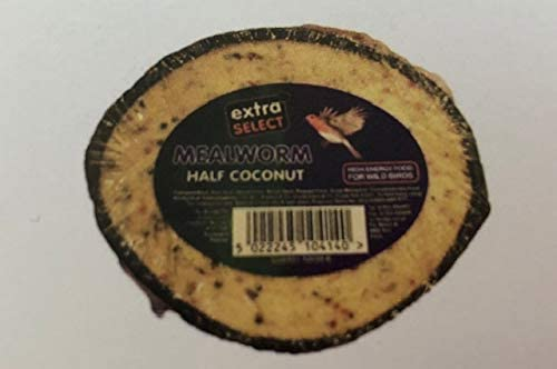 Extra Select Select Half Coconut Feeder Outdoor Food Extra Select