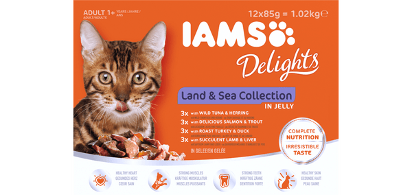 Iams Delights Land/Sea Jelly 12Pack