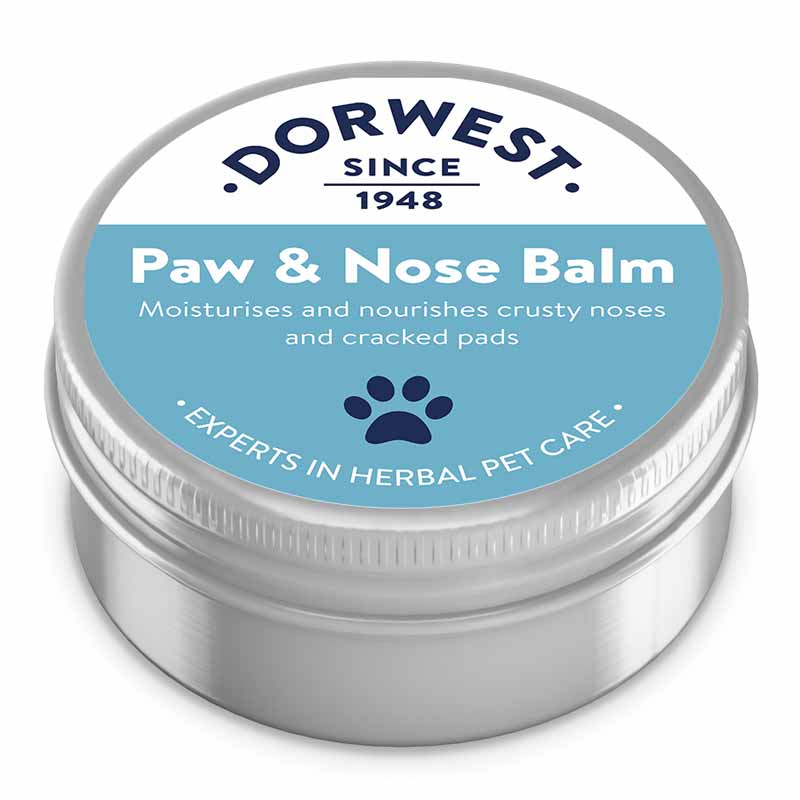 Dorwest Paw and Nose Balm 50ml Dog Treatments Dorwest Herbs