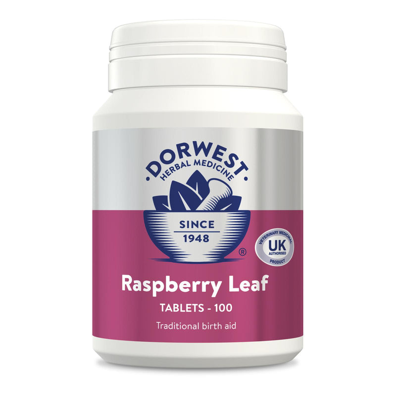 Dorwest Raspberry Leaf Tabets 100pk Dog Treatments Dorwest Herbs