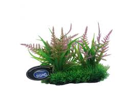 Betta Pink Fern Foreground Plant PP618 Fish Ornaments Betta