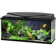 Ciano 80 LED Aquarium Black