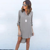 Long Sleeve V neck Casual Brief  Dresses