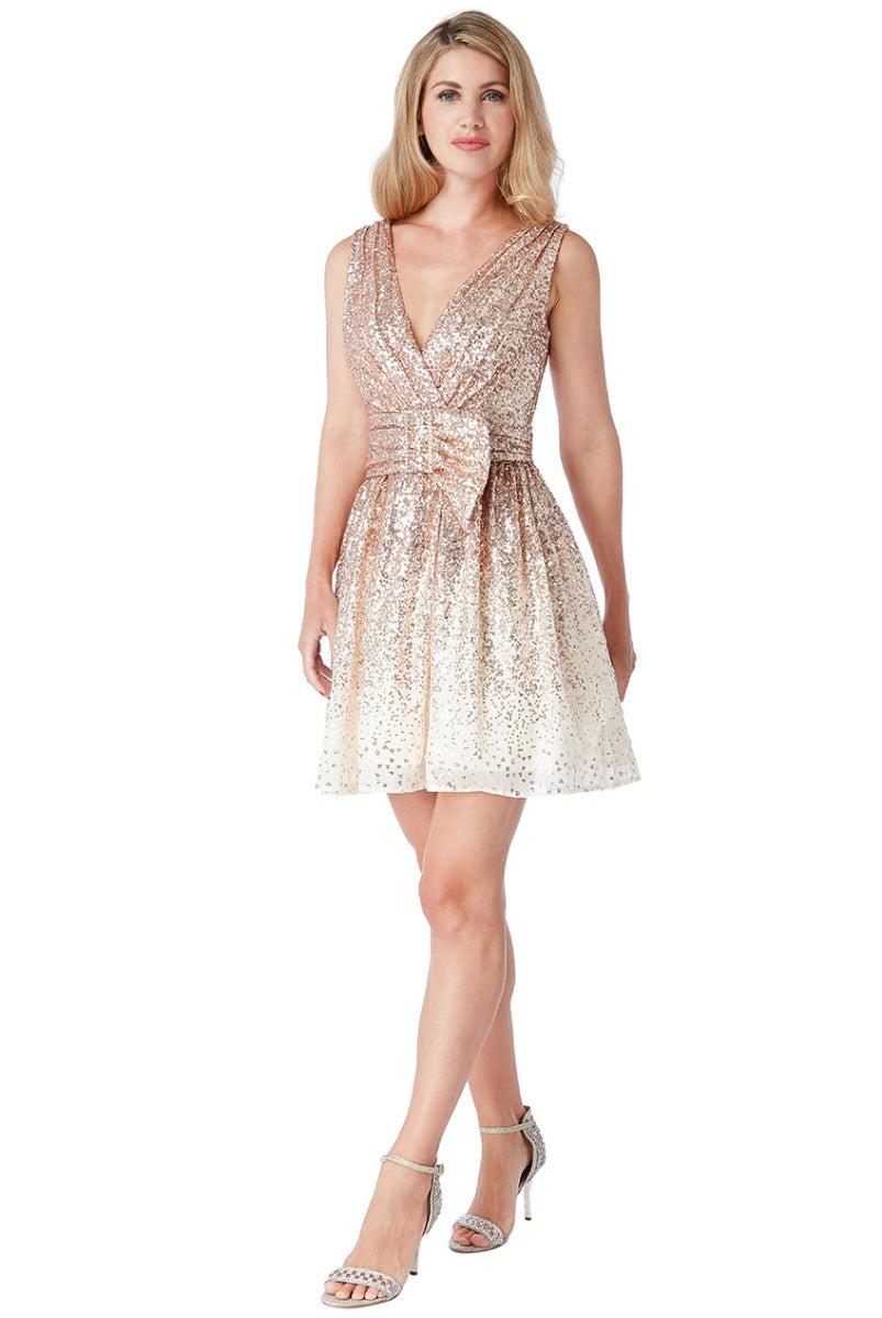 Champagne Sequin and Chiffon Belted Skater Dress