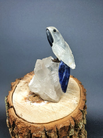 Quartz Macaw mounted on Quartz
