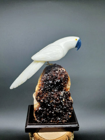 Grande Dolomita Parrot mounted on Citrine base
