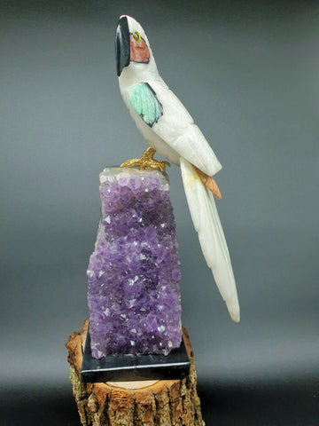 Grande Branco Parrot mounted on Amethyst base