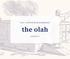 The 5 Korbonot - Part 1 The Olah Offering