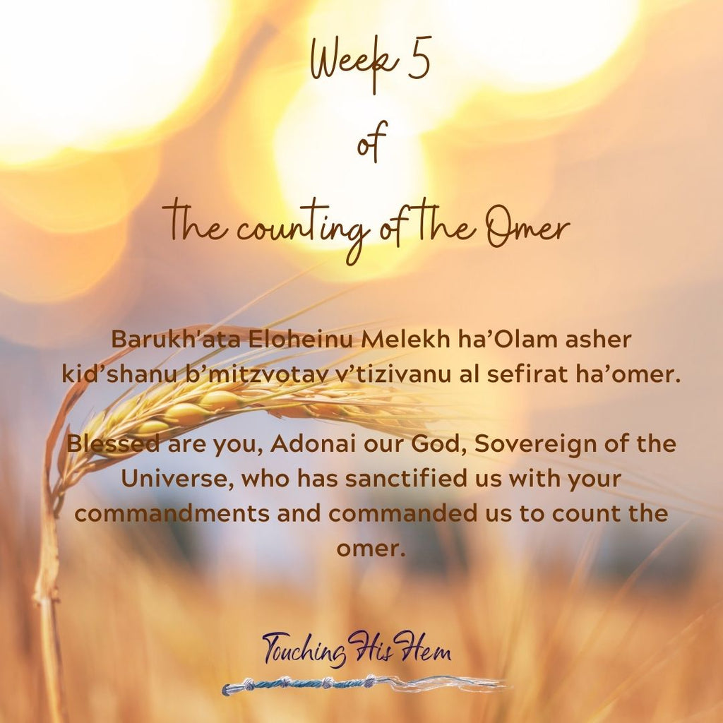 Week 5 of the Counting of the Omer - A Reflective Study